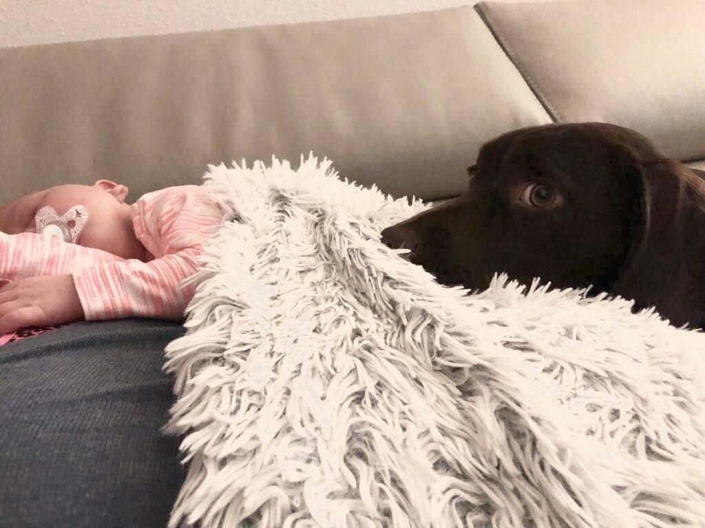 De eerste weken als kersverse mama!