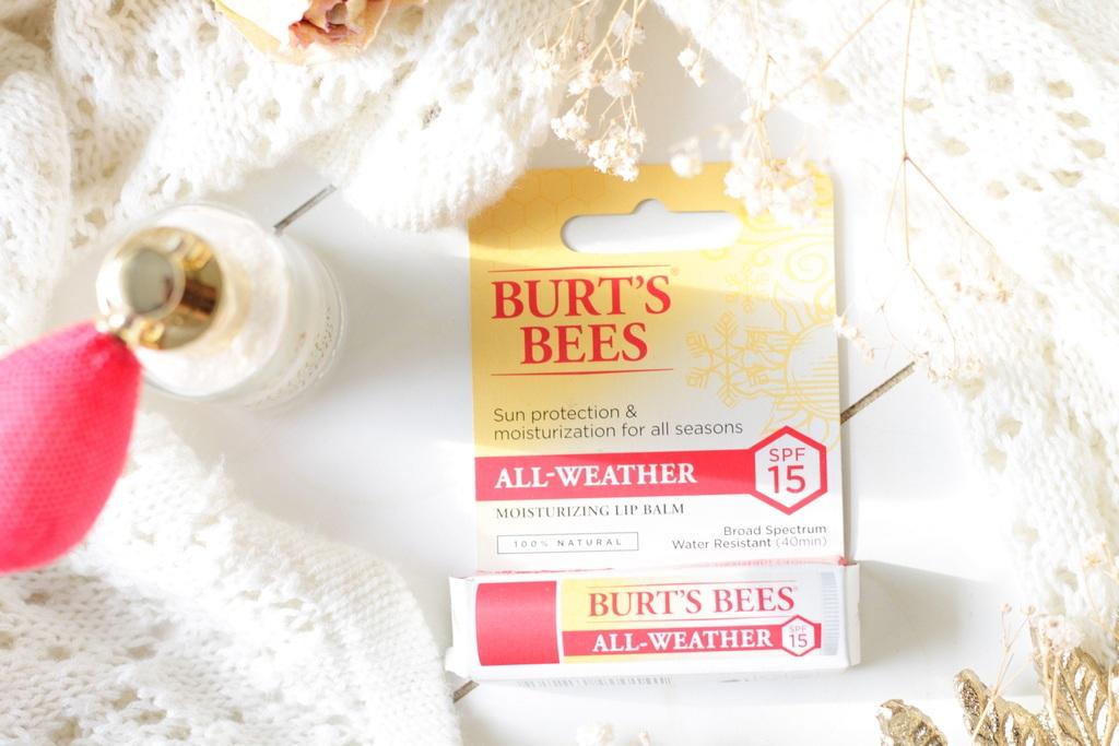 Burt's Bees All-Weather Lippenbalsem