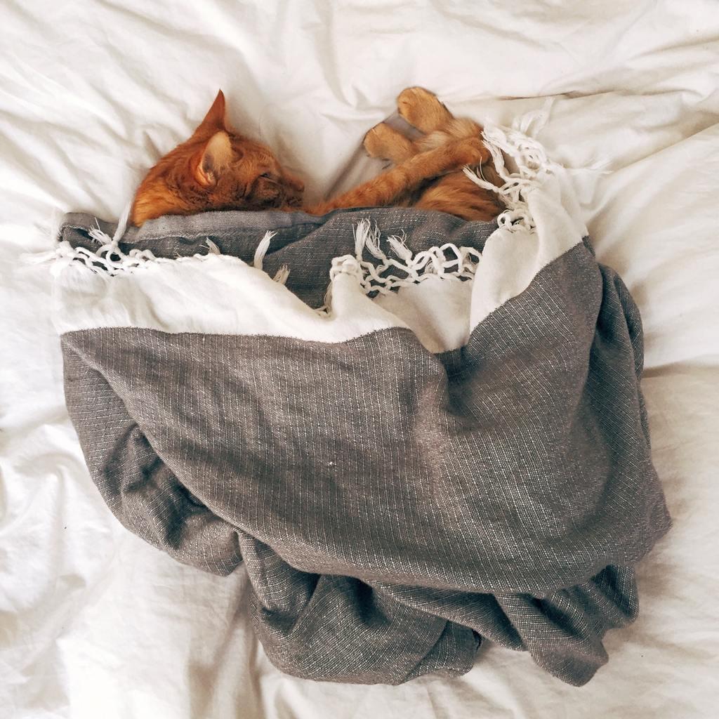 De zolder omtoveren tot een slaapkamer waar je uitrust
