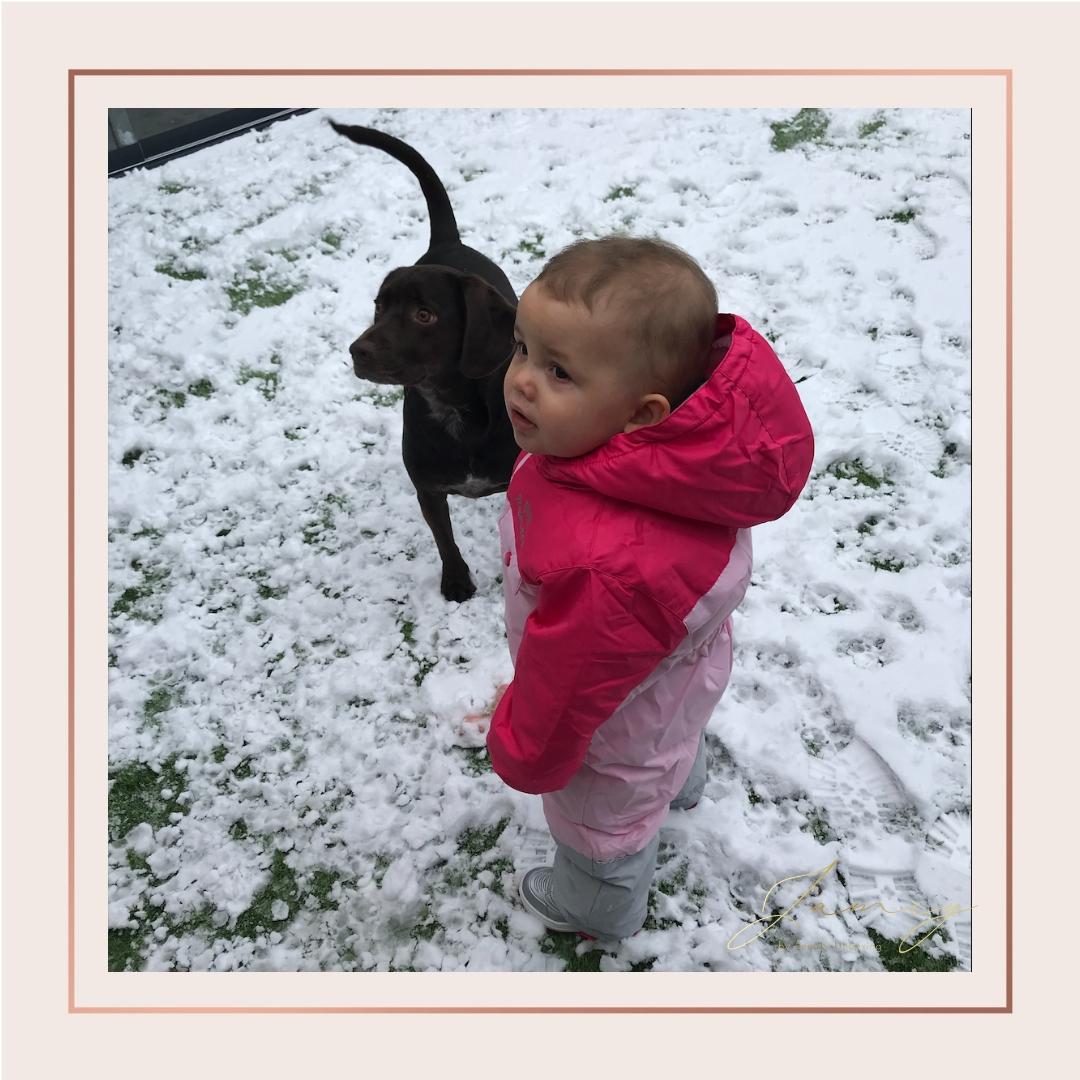 10 favorieten in de sneeuw
