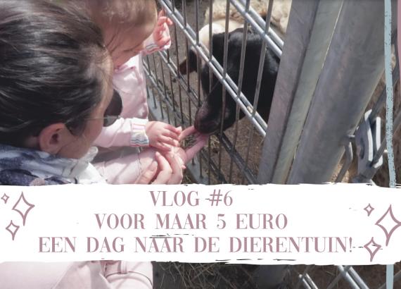 Vlog #6 voor maar 5 euro naar de dierentuin!