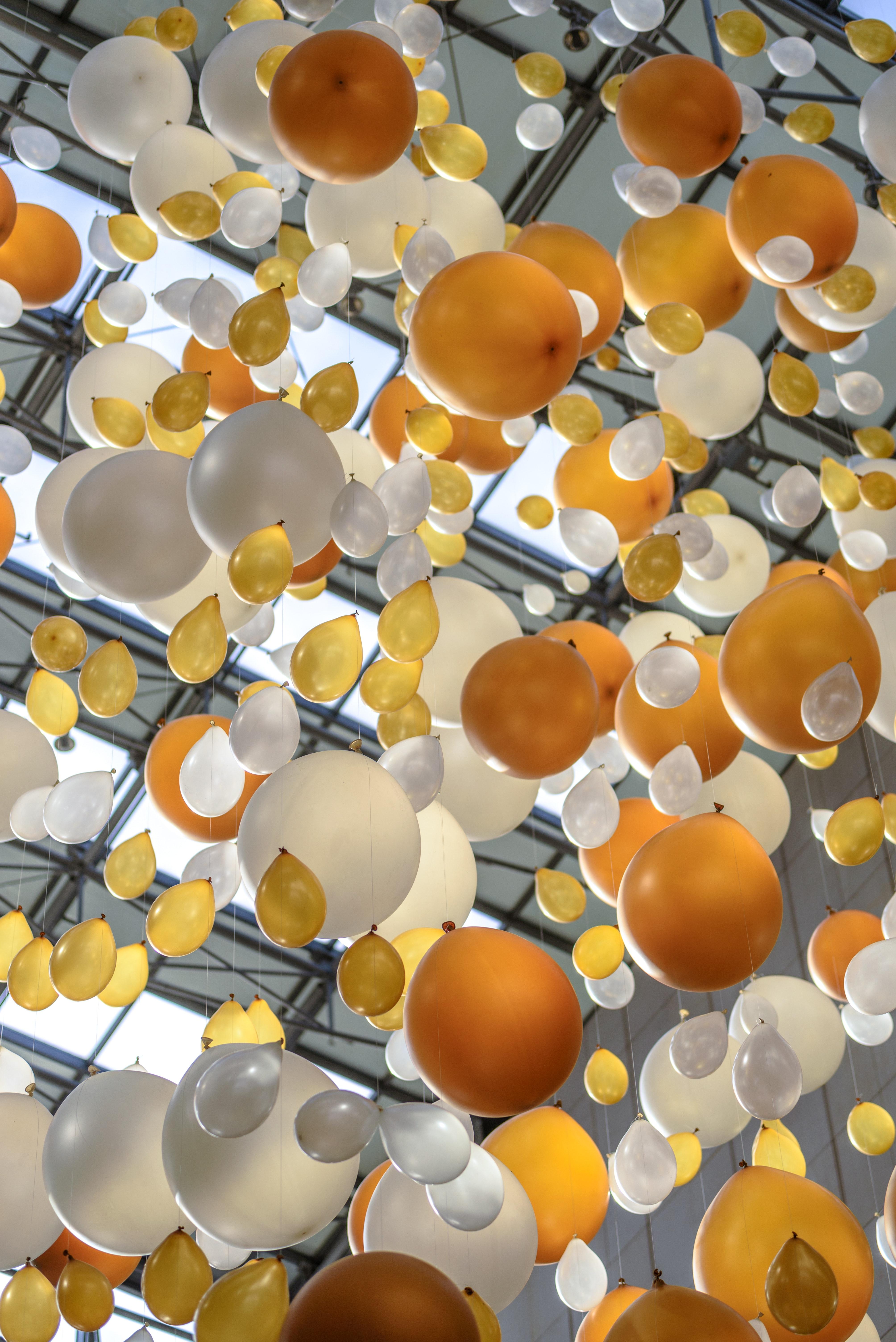 oranje ballonnen koningsdag