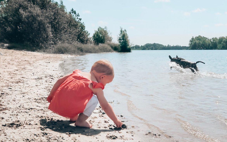 Action foto milo en noe op het strand