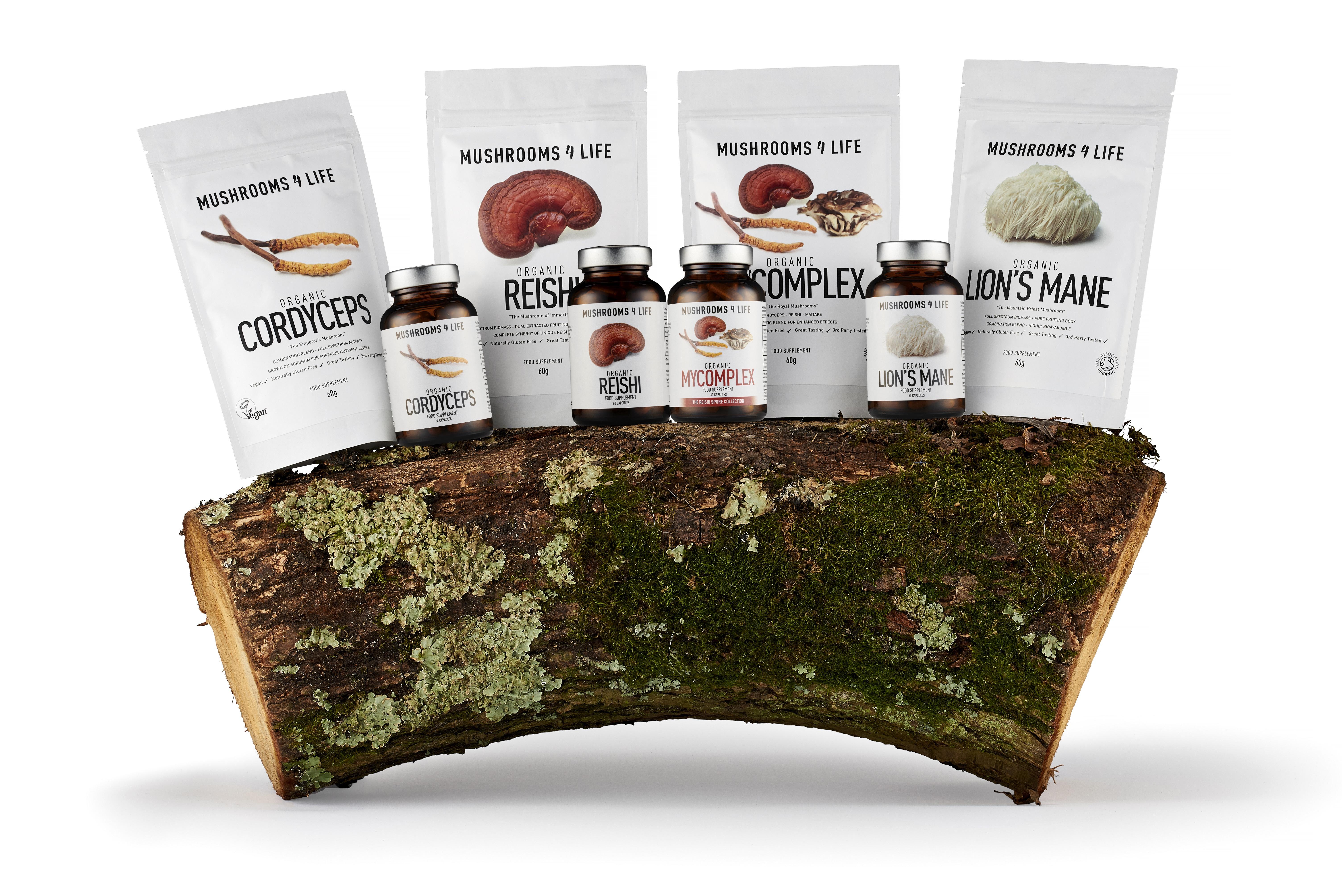Medicinale paddenstoelen sfeerbeeld